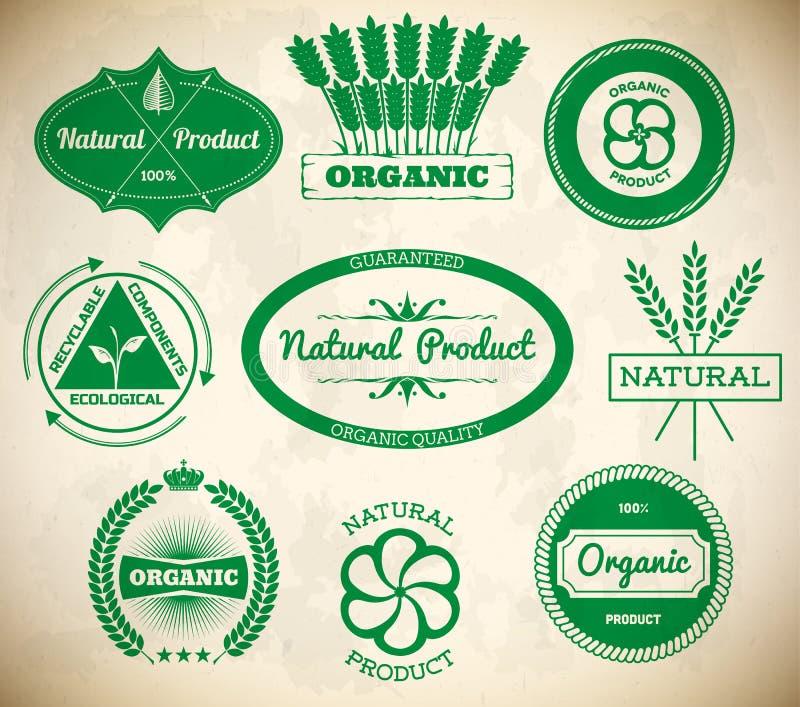 Комплект винтажных ярлыков eco Собрание 1 иллюстрация вектора