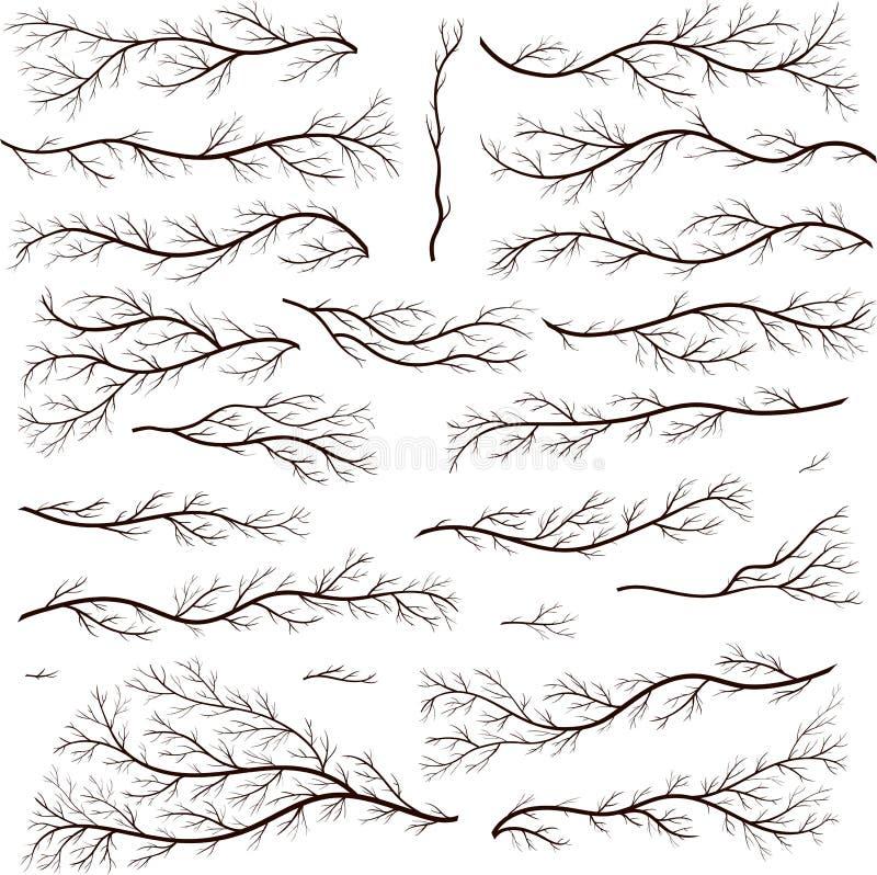 Комплект года сбора винограда готических деревенских элементов дизайна Флористические рамки вектора иллюстрация штока