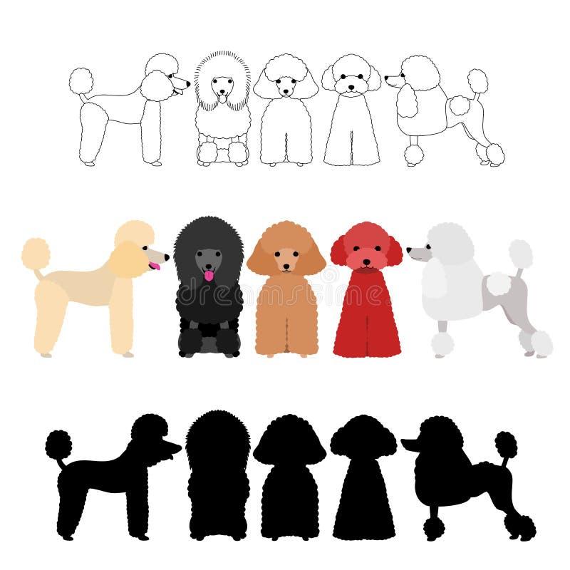 Комплект группы пуделя иллюстрация штока