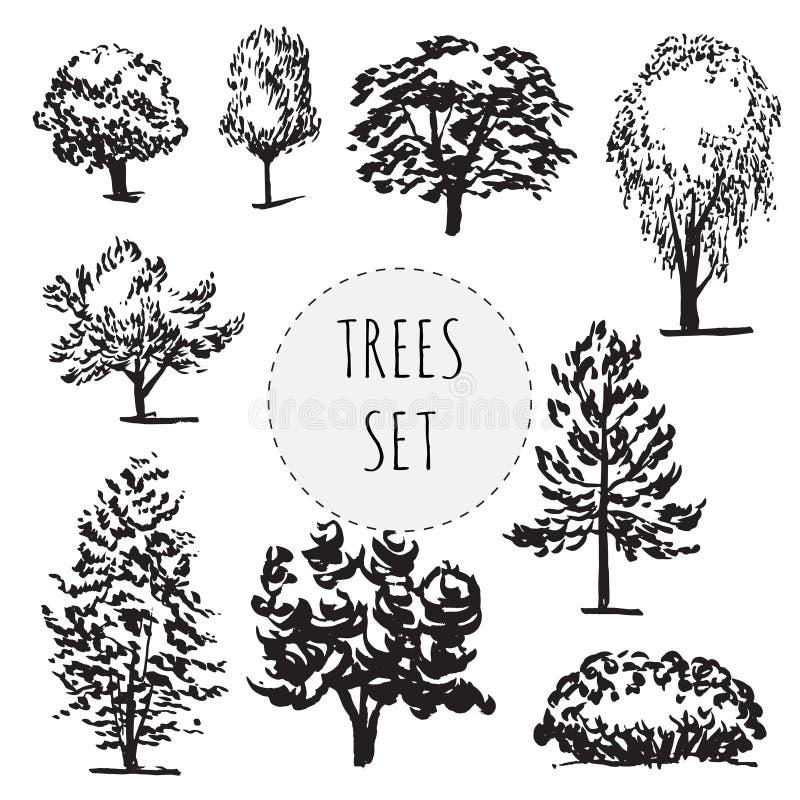 Комплект деревьев разных видов нарисованных рукой иллюстрация штока