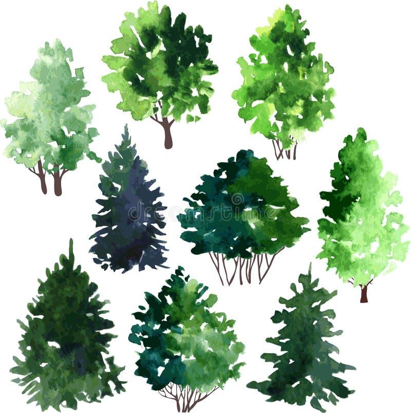 Комплект деревьев рисуя акварелью иллюстрация вектора