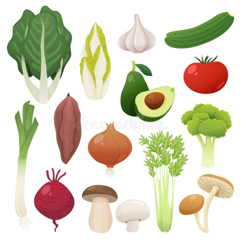 Комплект еды овощей также вектор иллюстрации притяжки corel иллюстрация штока