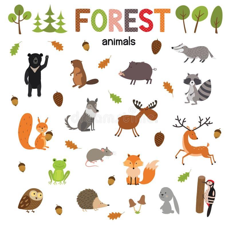 Комплект животных леса сделанных в плоском векторе стиля Собрание шаржа зоопарка для книг и плакатов детей иллюстрация вектора