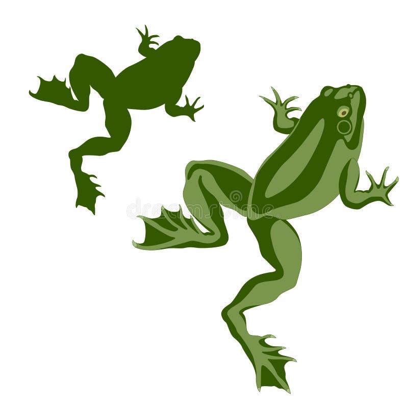 Комплект зеленого цвета лягушки лодкамиамфибии реалистический стоковое изображение rf