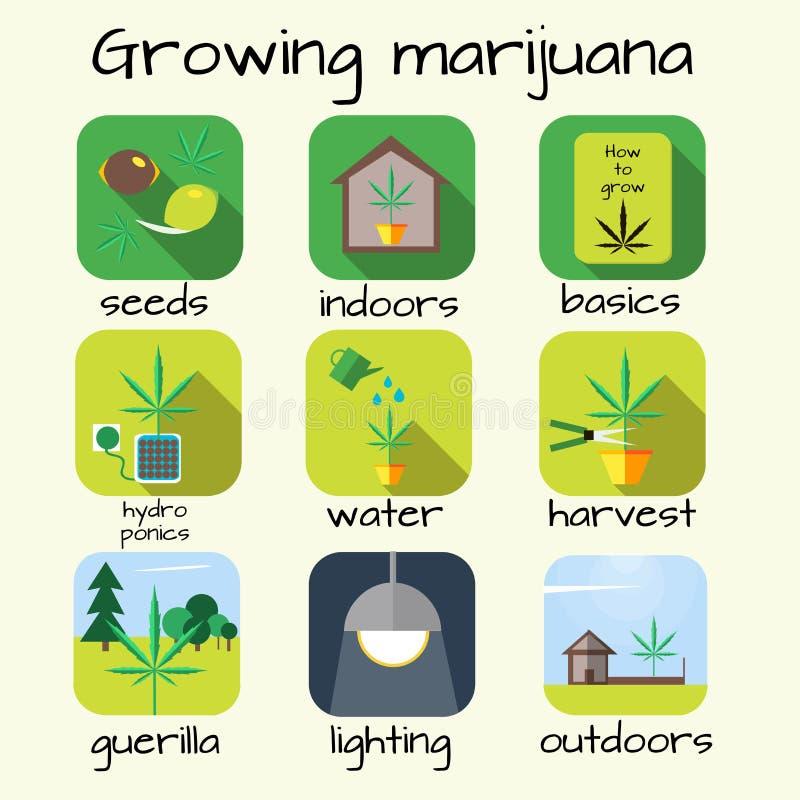 Комплект значка марихуаны растущий бесплатная иллюстрация