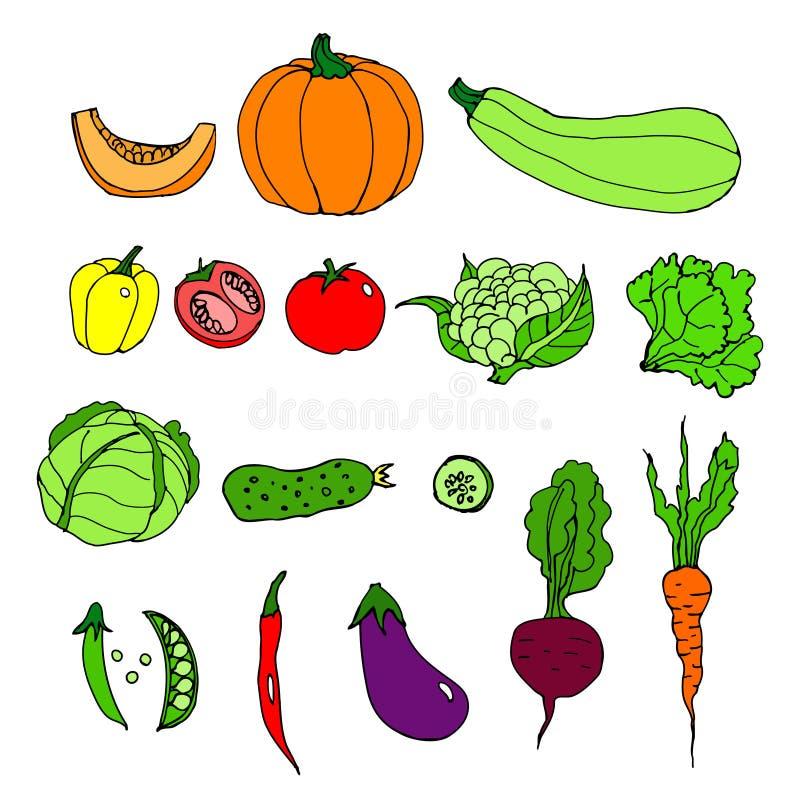 Комплект зрелых овощей шарж иллюстрация вектора