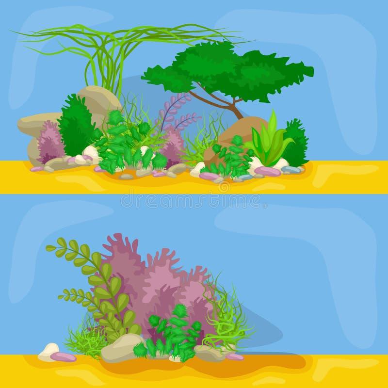 Комплект изолировал красочные кораллы и водоросли, флору вектора подводную, фауну иллюстрация вектора