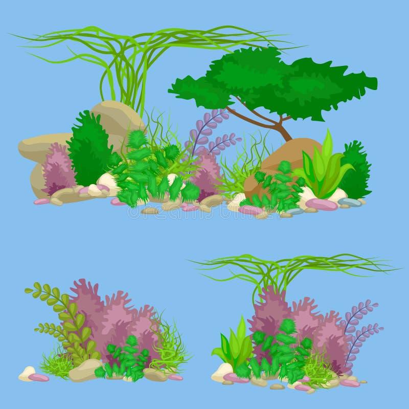 Комплект изолировал красочные кораллы и водоросли, флору вектора подводную, фауну бесплатная иллюстрация