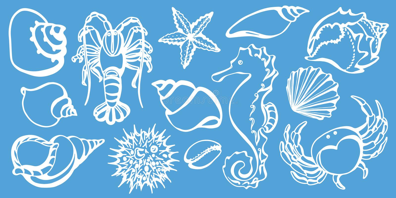 Комплект краба, лошади моря, рака, seashell, мальчишкаа моря, морской звёзды Вектор эскиза иллюстрация штока