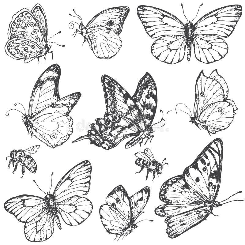 Комплект нарисованный рукой бабочек и пчел бесплатная иллюстрация