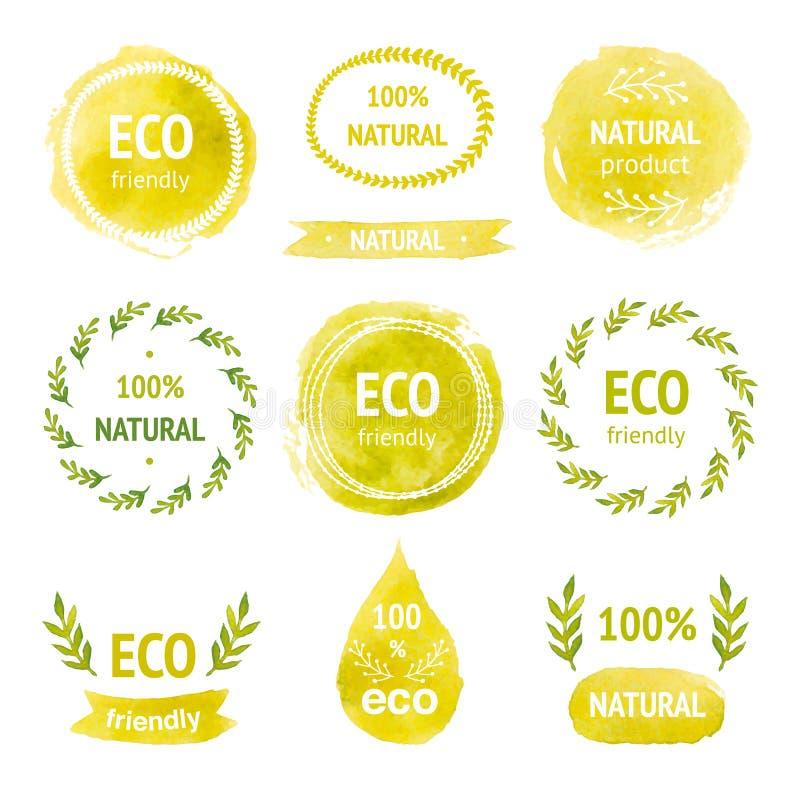 Комплект нарисованных рукой ярлыков eco акварели бесплатная иллюстрация