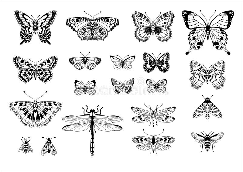 Комплект насекомых иллюстрация вектора