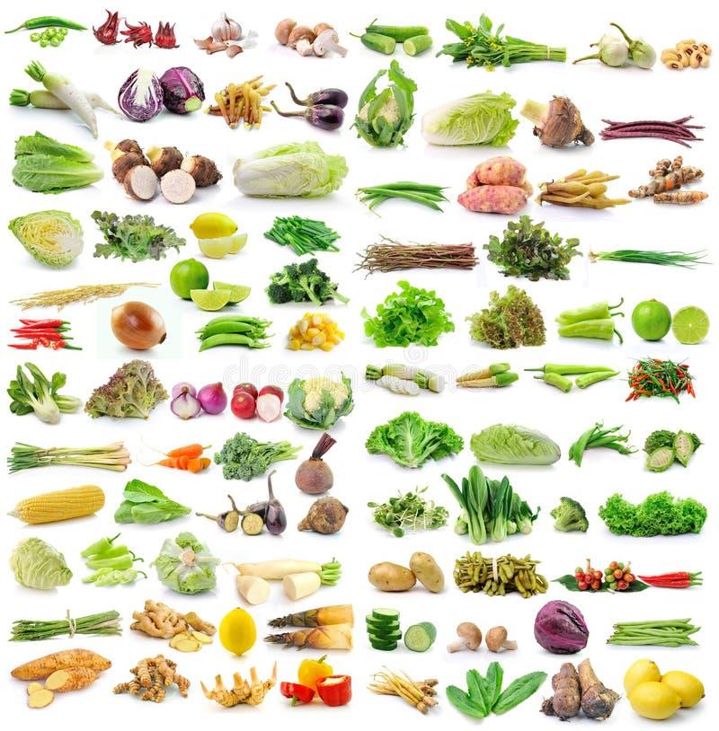 Комплект овоща на белой предпосылке стоковые фото