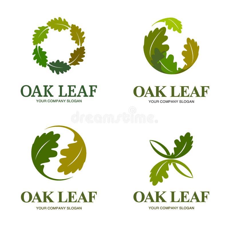 Комплект логотипа вектора лист дуба Шаблон логотипа стоковые изображения rf