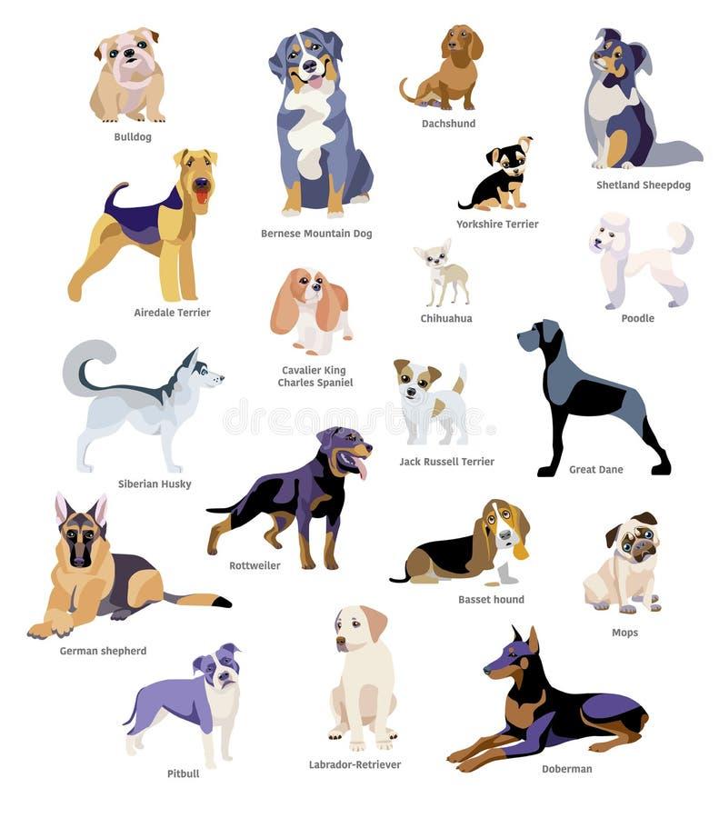 Комплект породы собак иллюстрация вектора
