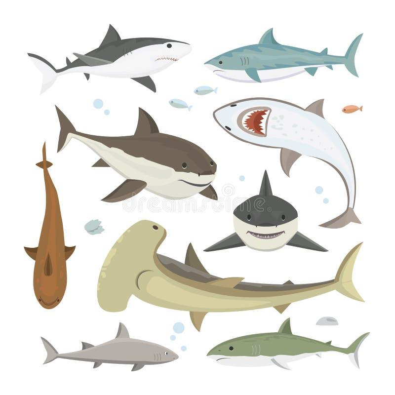 Комплект представления акулы вектора различный бесплатная иллюстрация