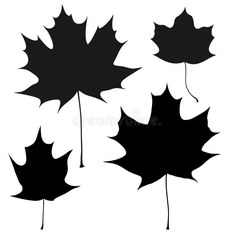 Комплект плана кленовых листов черноты вектора бесплатная иллюстрация