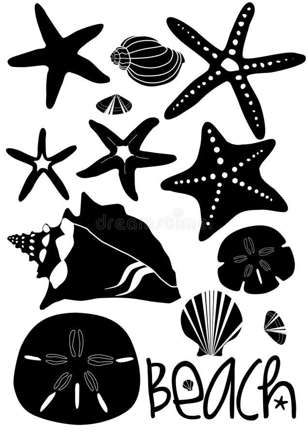 комплект пляжа доллара песка seashells  иллюстрация штока