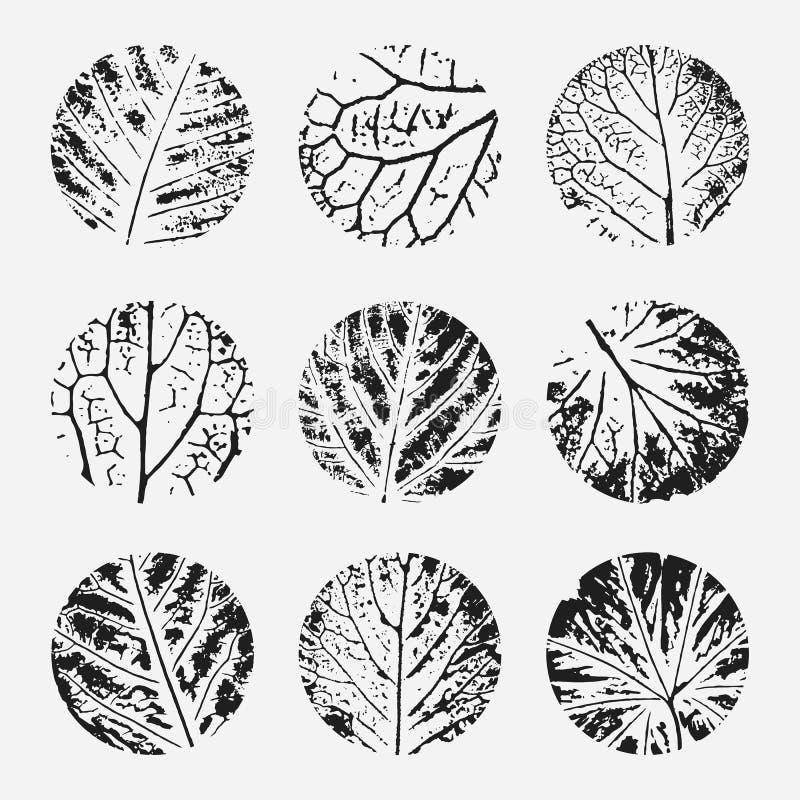 Комплект различной нарисованных рукой текстур grunge иллюстрация вектора