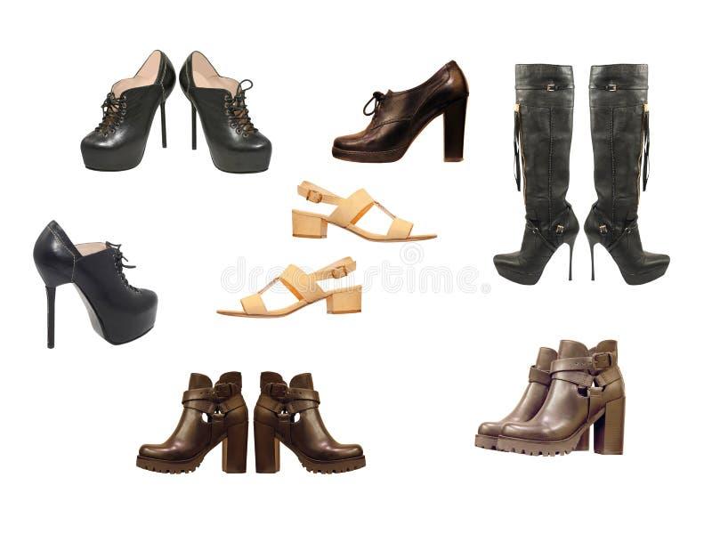 Комплект различных ботинок женщины изолировано стоковое изображение rf