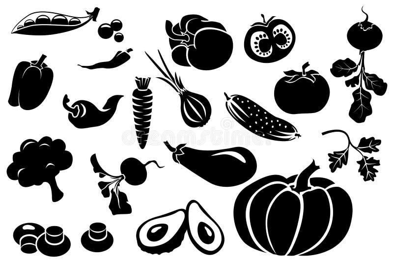 Комплект различных свежих овощей иллюстрация вектора