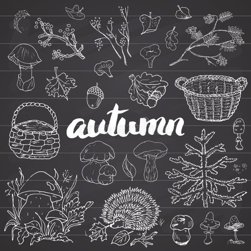 Комплект сезона осени Doodles и иллюстрация вектора литерности нарисованные рукой иллюстрация штока