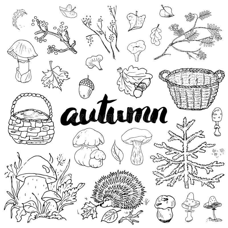 Комплект сезона осени Doodles и иллюстрация вектора литерности нарисованные рукой иллюстрация вектора