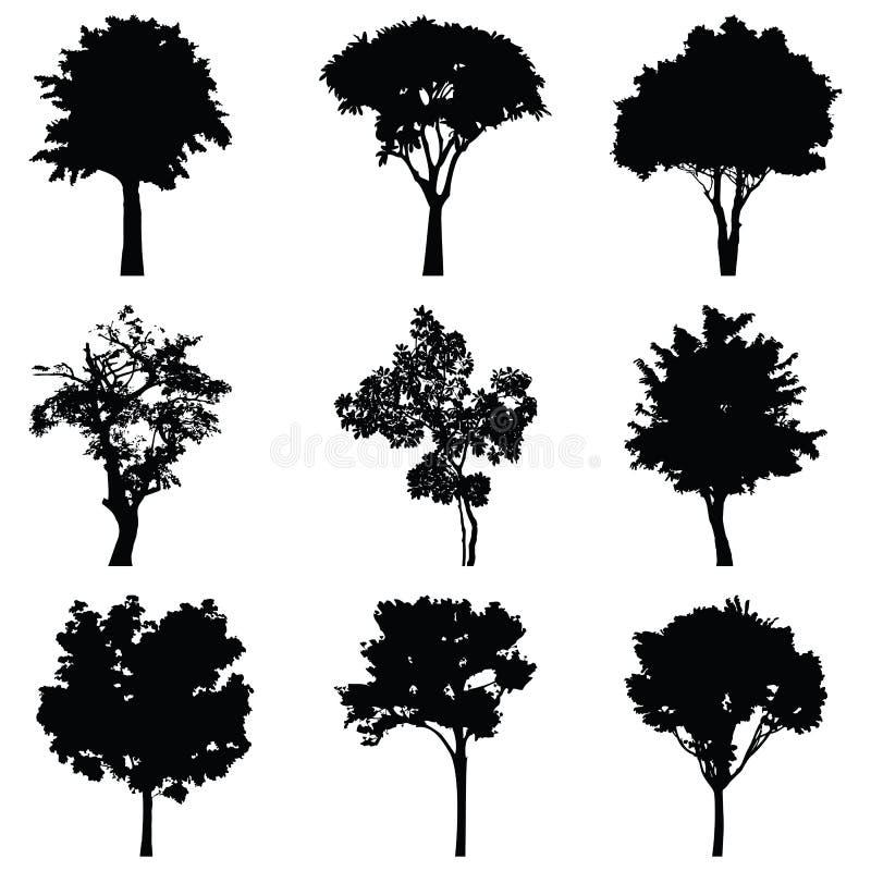 Комплект силуэта вектора деревьев иллюстрация вектора