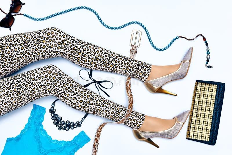 Комплект стильной моды одевает, ноги женщины тонкие стоковое фото