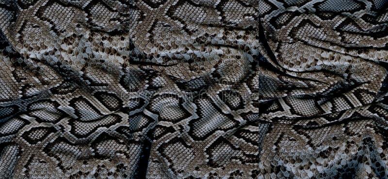 Комплект текстур snakeskin стоковая фотография rf