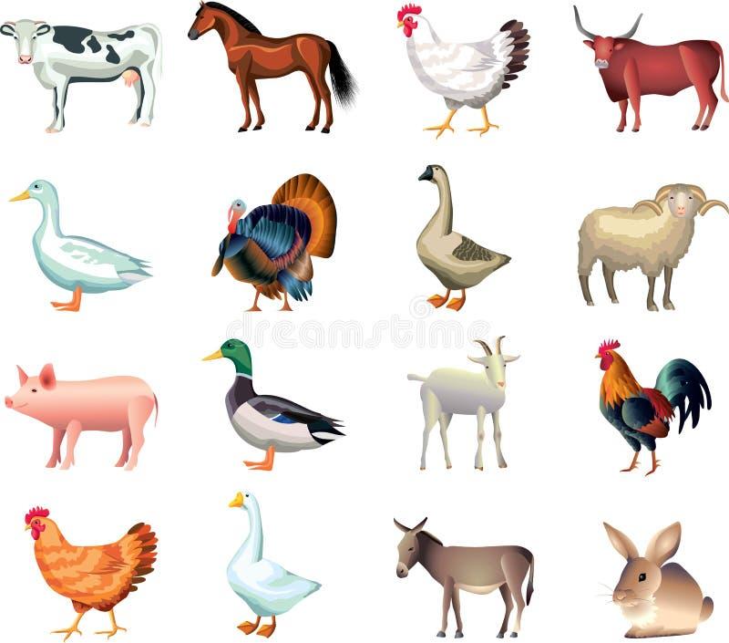 Комплект фото животноводческих ферм реалистический бесплатная иллюстрация