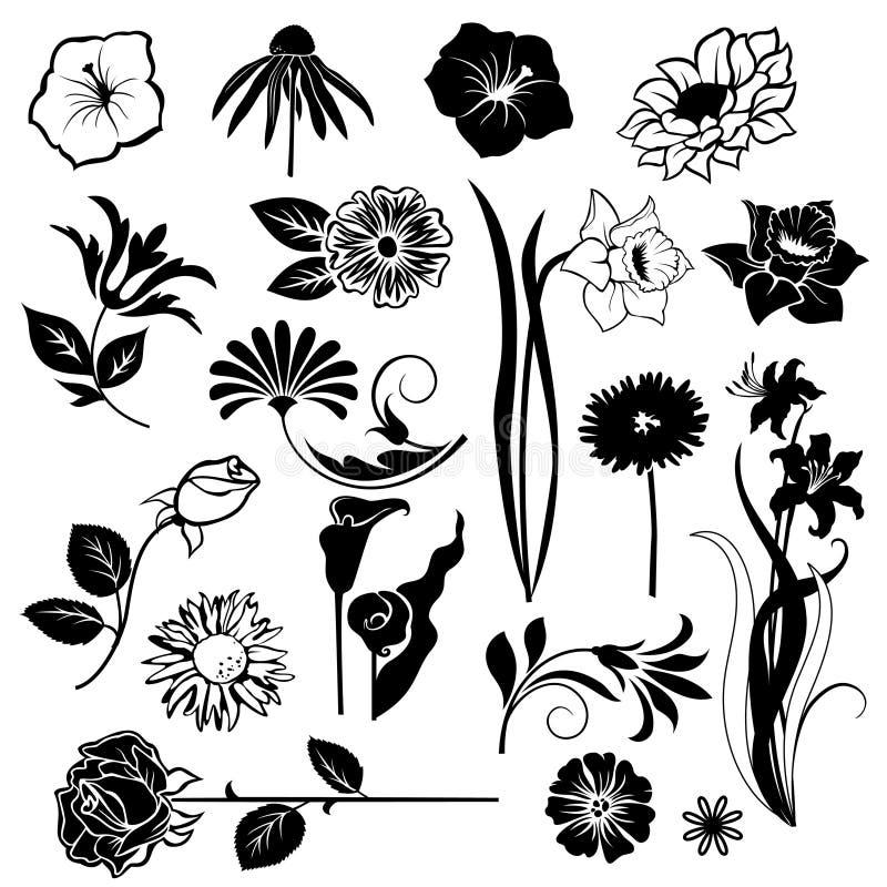 Комплект цветков векторов иллюстрация вектора