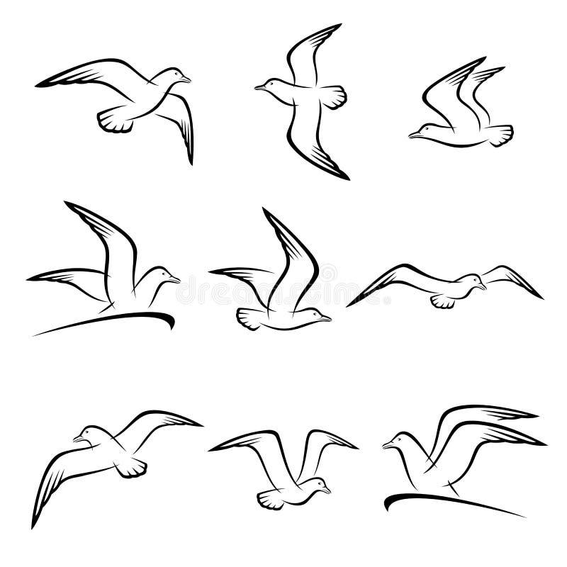 Комплект чайки вектор иллюстрация вектора