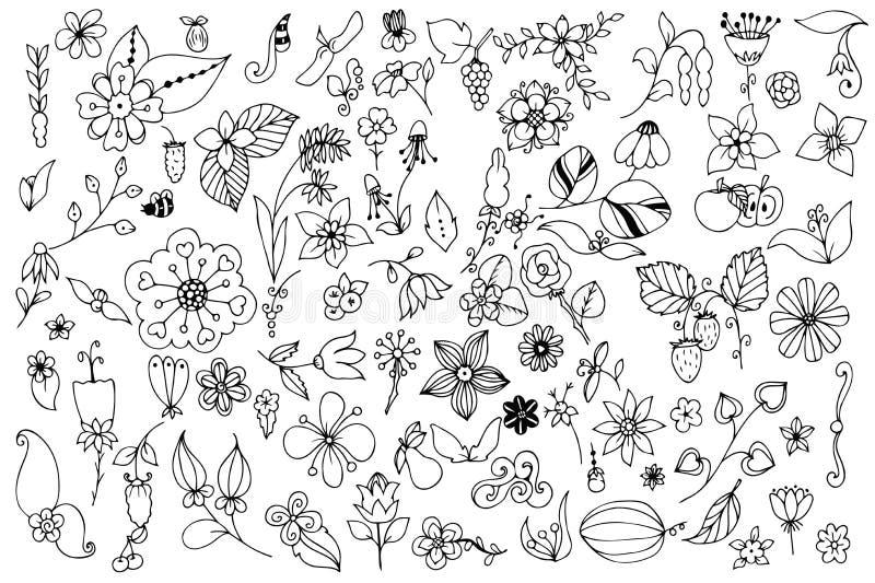 Комплект черно-белых листьев цветков doodle Нарисованные рукой элементы дизайна вектора иллюстрация вектора