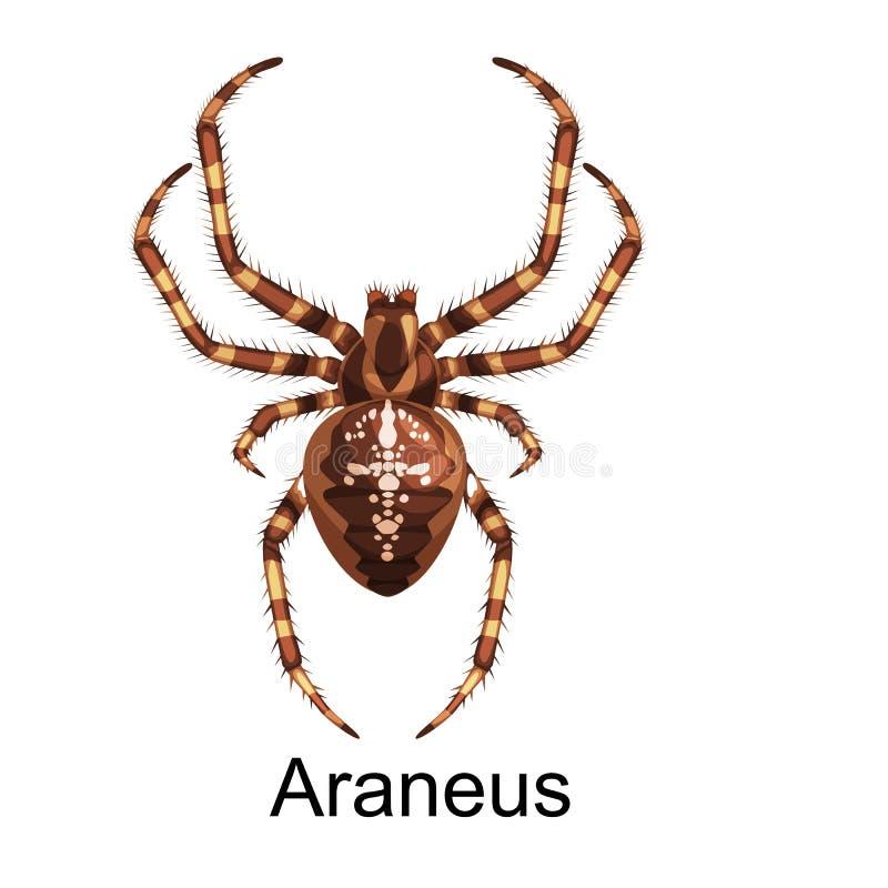 Комплект шаржа пауков, опасное собрание насекомых бесплатная иллюстрация
