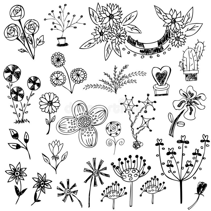 Комплект эскиза цветка иллюстрация штока