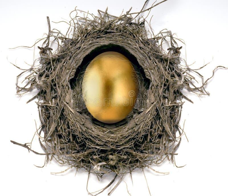комплект яичка золотистый стоковые изображения rf