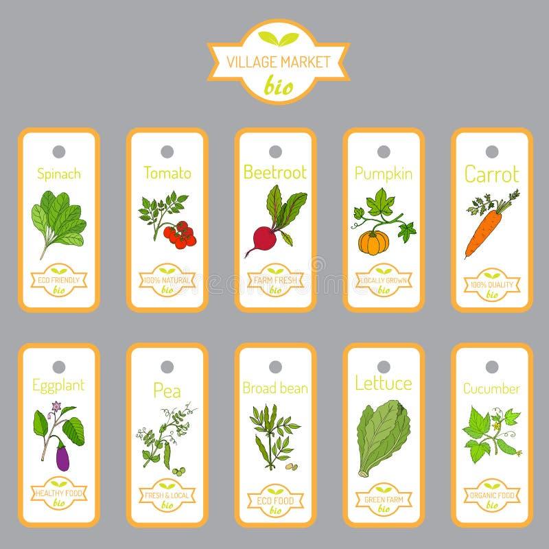 Комплект ярлыков вектора с овощами нарисованными рукой иллюстрация штока