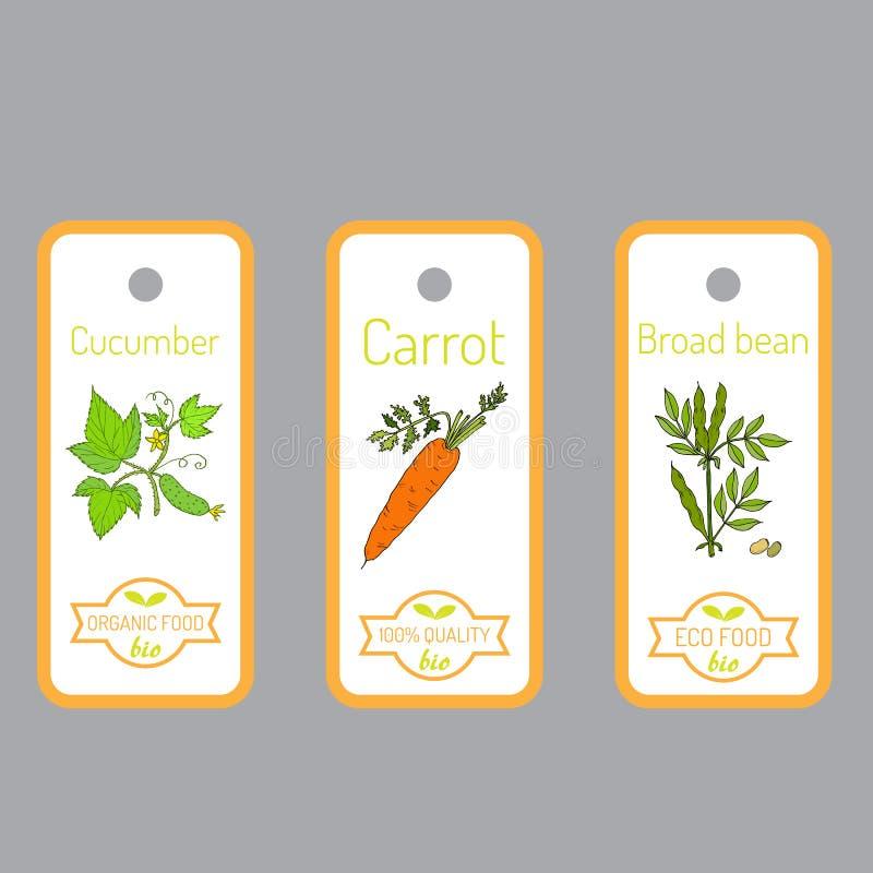 Комплект ярлыков вектора с овощами нарисованными рукой бесплатная иллюстрация