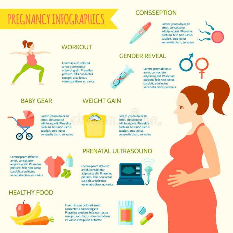 Комплект Infographic беременности иллюстрация вектора