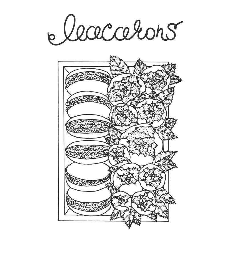 Комплект macarons в коробке с пионами иллюстрация вектора