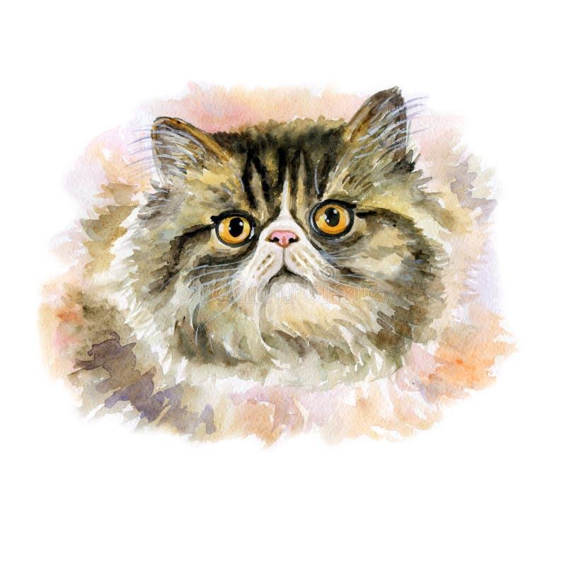 Конец акварели вверх по портрету милого longhair персидского кота породы изолированного на белой предпосылке Запачканный метод Co иллюстрация вектора
