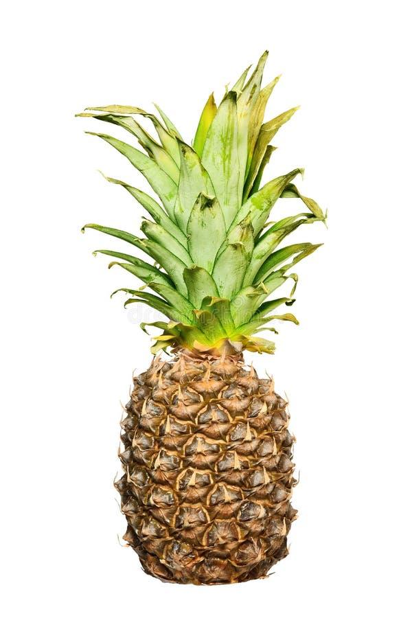 Конец ананаса вверх изолированный на белой предпосылке стоковая фотография rf