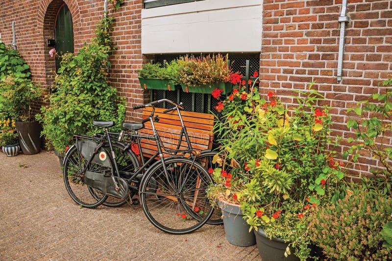 Конец-вверх велосипедов припарковал среди баков с цветковыми растениями перед домом кирпича на Амстердаме стоковое фото rf