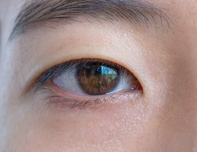 Конец-вверх глаза азиатской женщины Текстура темного коричневого глаза видима Деталь макроса стоковые фото