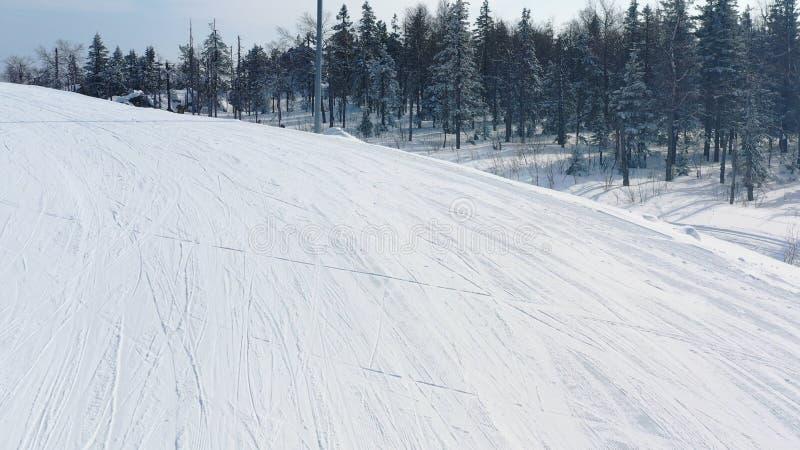 Конец-вверх горнолыжного склона и человека в катании на лыжах желтой куртки на следе около coniferous леса в зиме footage Лыжный  стоковые фотографии rf