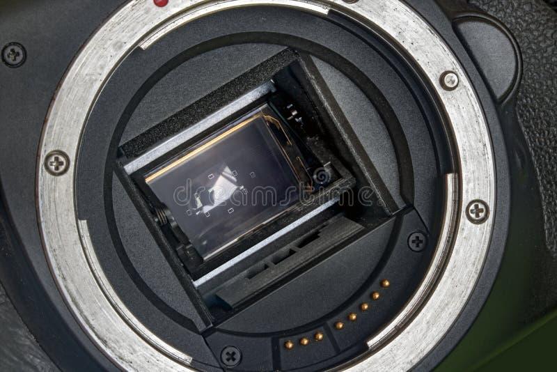 Конец-вверх держателя датчика и объектива цифровой фотокамеры APS-C стоковые изображения rf