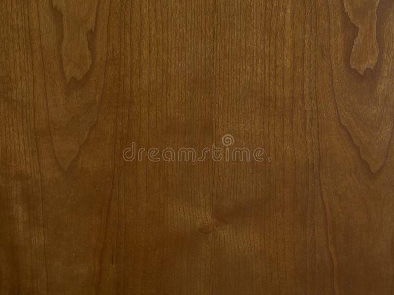 Конец-вверх древесины бука стоковые изображения