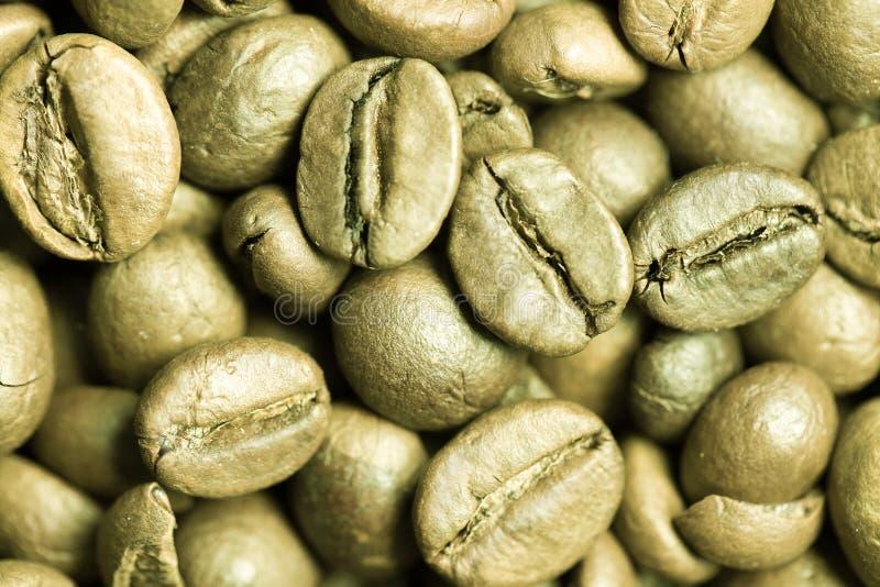 Конец-вверх зеленых кофейных зерен. стоковое фото