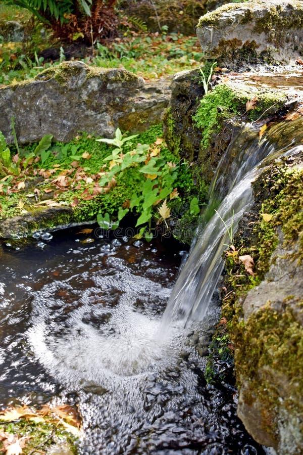 Конец вверх красивое waterful, вода создает волновой эффект по мере того как он брызгает в пруд ниже стоковые изображения